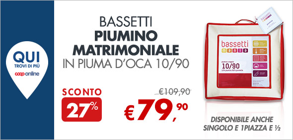 Bassetti Piumino matrimoniale in piuma d'oca a 79,90€